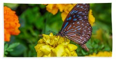 Butterfly On Yellow Marigold Beach Sheet