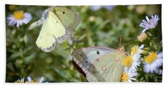 Beach Sheet featuring the photograph Butterfly Moments  by Kerri Farley