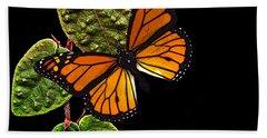 Butterfly Shadow Beach Towel