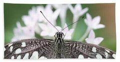 Butterfly View Beach Sheet