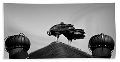 Buzzards 2 Beach Towel by Mark Alder