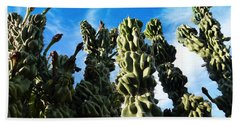 Cactus 1 Beach Towel by Mariusz Kula