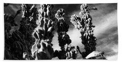 Beach Towel featuring the photograph Cactus 2 Bw by Mariusz Kula