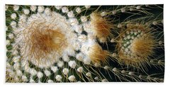 Cactus Close-up Beach Towel by Joyce  Wasser