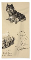 Cairn, Sealyham And Bull Terrier, 1930 Beach Towel