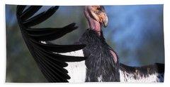 California Condor Beach Towel