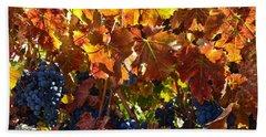 California Wine Grapes Beach Sheet