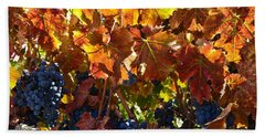 California Wine Grapes Beach Towel