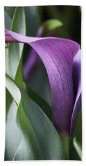 Calla Lily In Purple Ombre Beach Sheet