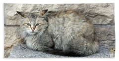 Camo Cat Beach Sheet