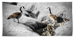 Canada Geese Family Beach Sheet by Elena Elisseeva