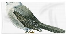 Canada Jay Beach Towel by Anonymous