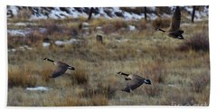 Canadian Geese In Flight Beach Towel