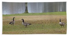 Canadian Geese Tourists Beach Sheet
