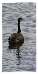 Canadian Goose On The Water Beach Sheet