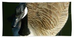 Beach Towel featuring the photograph Canadian Goose Portrait by Emmy Marie Vickers