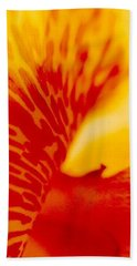 Beach Towel featuring the photograph Canna Lilly by Michael Hoard