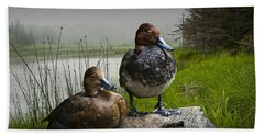 Canvasback Duck Pair By A Pond Beach Towel