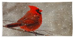 Cardinal In Snow Beach Sheet