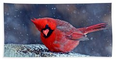 Cardinal In The Snow Beach Towel