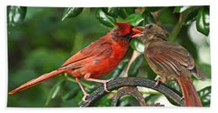 Cardinal Bird Valentines Love  Beach Towel
