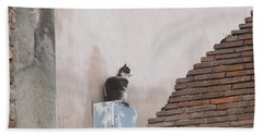 Beach Towel featuring the photograph Cat Above The Roman Ruins by Tiffany Erdman