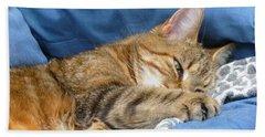 Beach Sheet featuring the photograph Cat Nap by Lingfai Leung