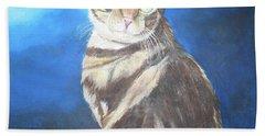 Cat Profile Beach Sheet