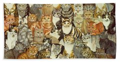 Cat Spread Beach Towel