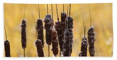 Beach Sheet featuring the photograph Cat Tails In November by Bruce Patrick Smith