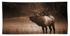 Cataloochee Bull Elk In Sepia Beach Towel
