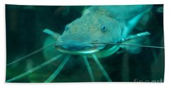 Catfish Billy Beach Towel