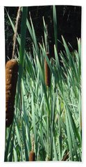 Cattails A Plenty Beach Towel by Michael Porchik