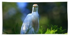 Cattle Egret Eyes Beach Towel