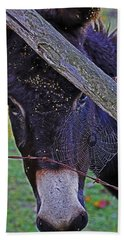 Caught In The Web Beach Towel