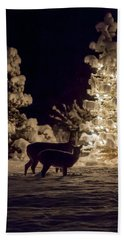 Beach Towel featuring the photograph Cautious by Aaron Aldrich