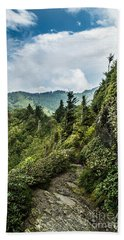 Beach Towel featuring the photograph Charlies Bunion Trail by Debbie Green