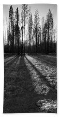 Charred Silence - Yosemite Rm Fire 2013 Beach Towel