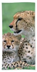 Beach Towel featuring the photograph Cheetah Mother And Cub by Yva Momatiuk John Eastcott