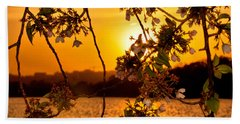 Beach Towel featuring the photograph Cherry Blossom Sunset by Mitchell R Grosky