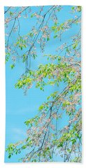 Cherry Blossoms Falling Beach Towel by Rachel Mirror