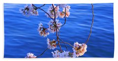 Cherry Blossoms Hanging Over Tidal Basin Beach Towel