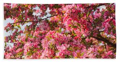 Cherry Blossoms In Washington D.c. Beach Towel