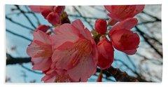 Cherry Blossoms Beach Sheet by Pamela Walton