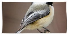 Chickadee Square Beach Towel