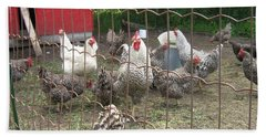 Chicken Coop. Beach Towel by Francine Heykoop