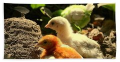 Cute Chicks Beach Towel by Salman Ravish