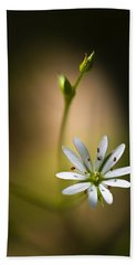Chickweed Blossom And Bud Beach Towel