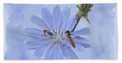 Chicory Wildflower - Cichorium Intybus Beach Towel