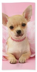 Chihuahua With Feather Boa Beach Towel